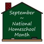 The Homeschool Adventure – A Reflection 1